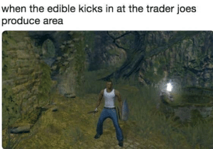 Dank Memes, Trader Joes, and Trader: when the edible kicks in at the trader joes  produce area