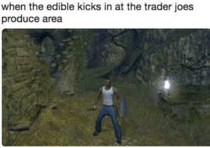 Me🗡irl by Rasuco MORE MEMES: when the edible kicks in at the trader joes  produce area Me🗡irl by Rasuco MORE MEMES