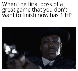 No ! Don't leave me now !: When the final boss of a  great game that you don't  want to finish now has 1 HP No ! Don't leave me now !