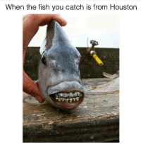 Fishing: When the fish you catch is from Houston