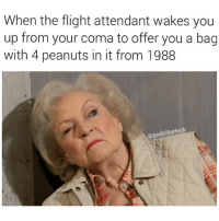 My man @godzillathick bringing us Betty White hot heat memes tonight son.: When the flight attendant wakes you  up from your coma to offer you a bag  with 4 peanuts in it from 1988  thick  odzilla My man @godzillathick bringing us Betty White hot heat memes tonight son.