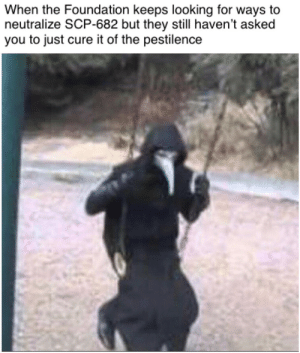 SCP memes: When the Foundation keeps looking for ways to  neutralize SCP-682 but they still haven't asked  you to just cure it of the pestilence SCP memes