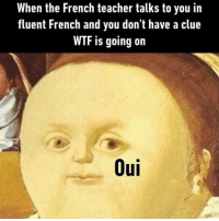 French Meme: When the French teacher talks to you in  fluent French and you don't have a clue  WTF is going on  Oui