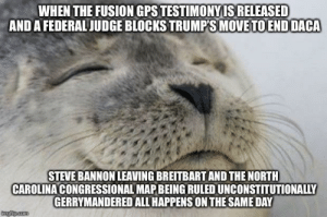 Yesterday was an awesome and hopeful day for America: WHEN THE FUSION GPS TESTIMONYIS RELEASED  AND A FEDERALJUDGE BLOCKS TRUMPS MOVETOEND DACA  STEVE BANNON LEAVING BREITBART AND THE NORTH  CAROLINA CONGRESSIONAL MAP BEING RULED UNCONSTITUTIONALIY  GERRYMANDERED ALL HAPPENS ON THE SAME DAY Yesterday was an awesome and hopeful day for America