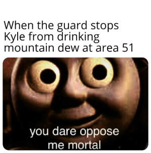 Drinking, Mountain Dew, and Dank Memes: When the guard stops  Kyle from drinking  mountain dew at area 51  you dare oppose  me mortal *guard starts sweating profusely*