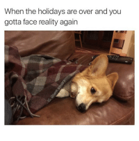 Funny, Reality, and The Holiday: When the holidays are over and you  gotta face reality again Happy 1 year anniversary to me and this meme