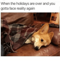 Latinos, Memes, and Mexican: When the holidays are over and you  gotta face reality again Whyyy 😐😐😐😂😂😂 🔥 Follow Us 👉 @latinoswithattitude 🔥 latinosbelike latinasbelike latinoproblems mexicansbelike mexican mexicanproblems hispanicsbelike hispanic hispanicproblems latina latinas latino latinos hispanicsbelike