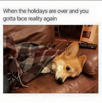 Break, Girl Memes, and Reality: When the holidays are over and you  gotta face reality again If you're on break for 4 more weeks holla at me!