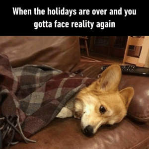 After a long weekend of binge watching  By georgeresch | TW: When the holidays are over and you  gotta face reality again After a long weekend of binge watching  By georgeresch | TW