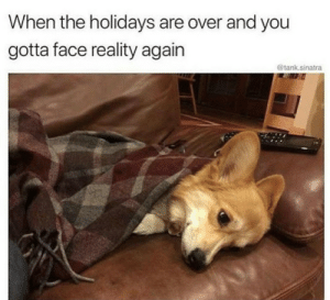 Dank, Memes, and Target: When the holidays are over and you  gotta face reality again  @tank.sinatra Facing reality by Holofan4life FOLLOW 4 MORE MEMES.