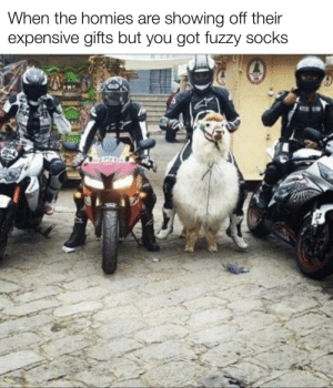 Fuzzy socks: When the homies are showing off their  expensive gifts but you got fuzzy socks  CCE Fuzzy socks