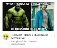 Hulk: WHEN THE HULK GETS REALLY ANGRY  HE TURNS INTO CHUCK NORRIS 13:46  100 Most Hilarious Chuck Norris  Memes Ever  FunnyPicsOnly 1M views  5 months ago