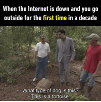 9gag, Dank, and Funny: When the Internet is down and you go  outside for the first time in a decade  What type of dog is this?  Ehis is a tortoise I don't know Tortoise is a kind of dog... https://9gag.com/gag/aY4425V/sc/funny?ref=fbsc