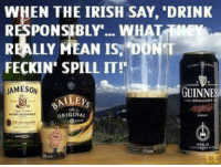 Irish: WHEN THE IRISH SAY, DRINK  RESPONSIBLY... WHAT  REALLY MEAN IS, DONT  FECKIN SPILL IT!'  JAMESON  GUINN  ALLEys  ORIGINAL