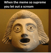 me irl: When the meme so supreme  you let out a scream me irl