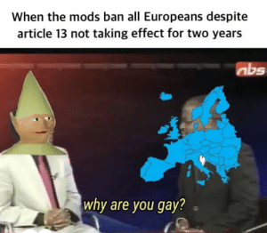 mfw when they also banned people outside of Europe: When the mods ban all Europeans despite  article 13 not taking effect for two years  abs  why are you gay? mfw when they also banned people outside of Europe