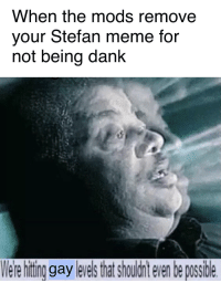 Dank, Meme, and Got: When the mods remove  your Stefan meme for  not being dank  ere hitin gay leresthat shouldnt even be possidle even after he got Meme of the Year