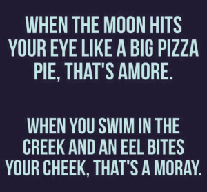 Memes, Pizza, and Moon: WHEN THE MOON HITS  YOUR EYE LIKE A BIG PIZZA  PIE, THAT'S AMORE  WHEN YOU SWIM IN THE  CREEK AND AN EEL BITES  YOUR CHEEK, THAT'S A MORAY