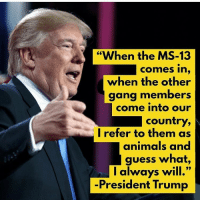 "Animals, Memes, and Gang: ""When the MS-13  comes in,  when the other  gang members  come into our  country,  I refer to them as  animals and  guess what,  l always will.""  -President Trump I can not believe the left is upset about Trump calling MS-13 animals 🗣 @Badassery"