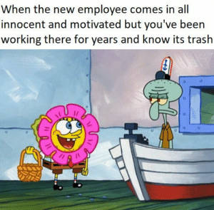 Trash, Been, and Working: When the new employee comes in all  innocent and motivated but you've been  working there for years and know its trash Innocent and motivated (i.redd.it)