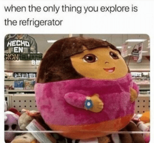 awesomesthesia:  Dora the explora: when the only thing you explore is  the refrigerator  HECHD  EN awesomesthesia:  Dora the explora