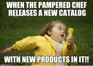 Cher, Meme, and Girl: WHEN THE PAMPERED CHER  RELEASES A NEW CATALOG  WITH NEW PRODUCTS IN IT!! Chubby Bubbles Girl Meme - Imgflip