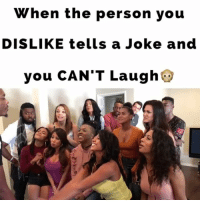 Being Alone, Memes, and Jokes: When the person you  DISLIKE tells a Joke and  you CAN'T Laugh When the person you DISLIKE tells a Joke and you CAN'T Laugh🙊LoL TAG someone if you've been there B4! Idea by: @nerraab Feat. @reggiecouz @lablacklatina @jetdope @jetdope @jaclynchaidez @officialjennybabas @vonroburts @hotaskell @efrangeliz_ @btkingsley @emilieknowseverything @angeloofficialpage jokes haters laughing alone michaeljackson moonlight montelljordan thisishowwedoit chickennbiscuits juhahnjones