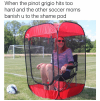 Funny, Juice, and Banished: When the pinot grigio hits too  hard and the other soccer moms  banish u to the shame pod wtf Pam u know the xannies don't mix with the mommy juice 😑