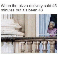 Funny, Memes, and Pizza: When the pizza delivery said 45  minutes but it's been 48  Il SarcasmOnly