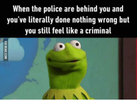 9gag, Dank, and Police: When the police are behind you and  you've literally done nothing wrong but  you still feel like a criminal I have this feeling every time when I go out of the shop empty-handed. 9GAG Mobile App: www.9gag.com/mobile?ref=9fbp  http://9gag.com/gag/azADjxq?ref=fbp