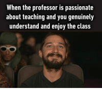 professor: When the professor is passionate  about teaching and you genuinely  understand and enjoy the class