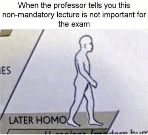 Dank, Memes, and Target: When the professor tells you this  non-mandatory lecture is not important for  the exam  ES  LATER HOMOく See you around fool by lilmigmig MORE MEMES