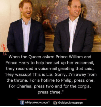 "Prince: When the Queen asked Prince William and  Prince Harry to help her set up her voicemail,  they recorded a voicemail greeting that said  ""Hey wassup! This is Liz. Sorry, I'm away from  the throne. For a hotline to Philip, press one.  For Charles. press two and for the corgis,  press the""  0  /didyouknowpagel @didyouknowpage"