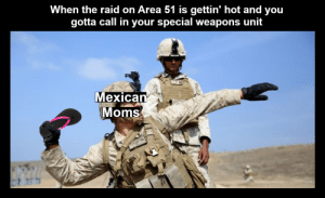 Moms, Dank Memes, and Mexican: When the raid on Area 51 is gettin' hot and you  gotta call in your special weapons unit  Mexican  Moms An instrument of discipline and terror *S M A C K*