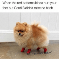 Bitch, Shoes, and Girl Memes: When the red bottoms kinda hurt your  feet but Cardi B didn't raise no bitch  the mermaid agoon These is blister shoes @iamcardib @the_mermaid_lagoon