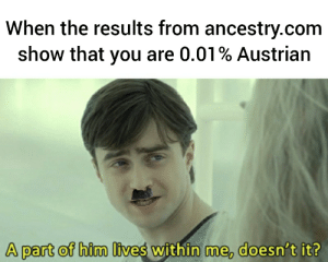 Ancestry, Good, and Dank Memes: When the results from ancestry.com  show that you are 0.01% Austrian  A part of him lives within me, doesn't it? That's why I do so good at camps