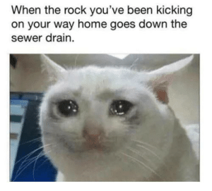 Me irl: When the rock you've been kicking  on your way home goes down the  sewer drain Me irl