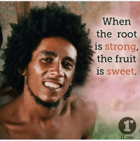 sweet brown: When  the root  is strong,  the fruit  is  sweet  iLove