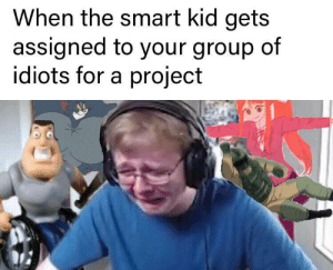 Project, Smart, and Group: When the smart kid gets  assigned to your group of  idiots for a project disowned