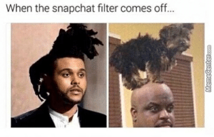 Filter Memes. Best Collection of Funny Filter Pictures: When the snapchat filter comes off... Filter Memes. Best Collection of Funny Filter Pictures