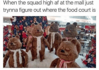 Sometimes it gets too dank to handlehttp://www.universeofmemes.com/: When the squad high af at the mall just  trynna figure out where the food court is  McDor   Sometimes it gets too dank to handlehttp://www.universeofmemes.com/