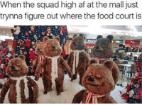Food Court: When the squad high af at the mall just  trynna figure out where the food court is