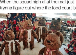 Food Court: When the squad high af at the mall just  trynna figure out where the food court is  McDor