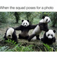 Best Friend, Friends, and Squad: When the squad poses for a photo #friendship #friends #best-friend #quotes #friendship-quotes #BFF