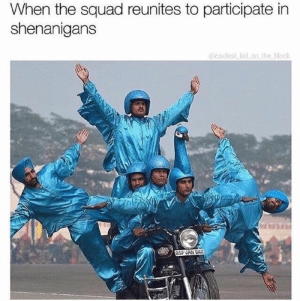 Memes, Shenanigans, and Squad: When the squad reunites to participate in  shenanigans  @coolest-kid-on-the-block  SF JAN BZ 33 Hysterical Memes That'll Get You Chuckling