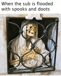 Dank Memes, Spooks, and Nothing: When the sub is flooded  with spooks and doots