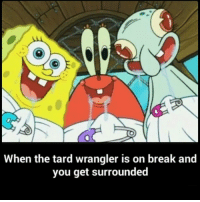 Spongebob Rainbow: When the tard wrangler is on break and  you get surrounded