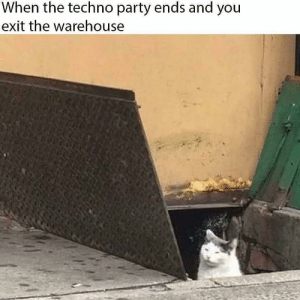 techno: When the techno party ends and you  exit the warehouse