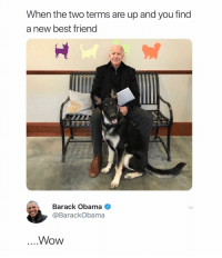 Joe Biden adopted a dog. That is all. Carry on.: When the two terms are up and you find  a new best friend  Barack Obama  @BarackObama  Wow Joe Biden adopted a dog. That is all. Carry on.
