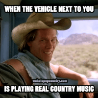 Memes, Country Music, and 🤖: WHEN THE VEHICLE NEXT TO YOU  wehatepopcountry.com  IS PLAYING REAL COUNTRY MUSIC